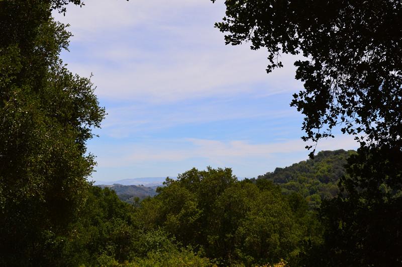 Redwood Regional Park5