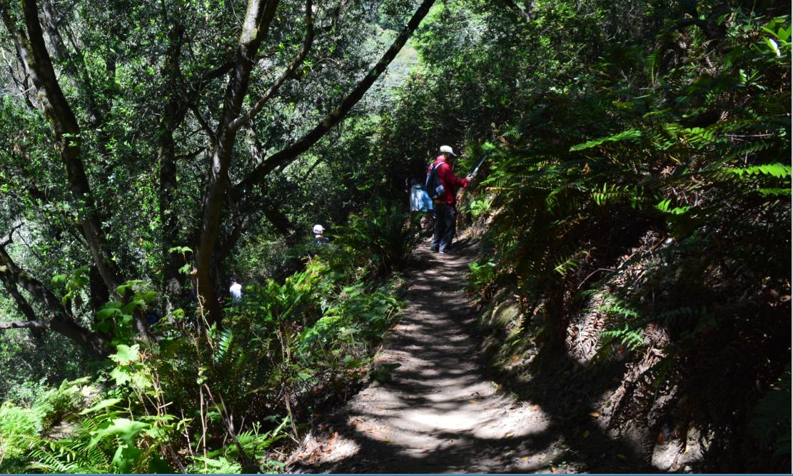 huckleberry path loop2