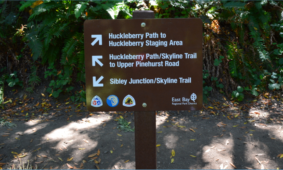 huckleberry path loop4
