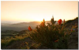 mission peak sunrise-dudu6