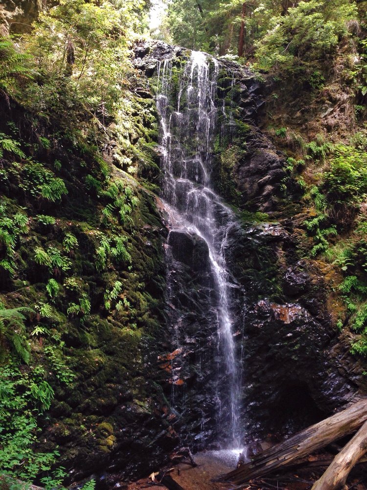 big basin redwoods sp_waterfall