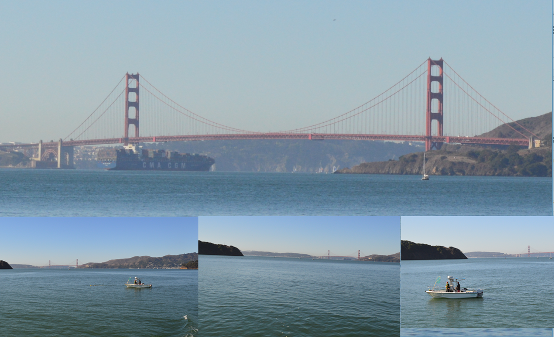 golden gate bridge from the way to angelisland
