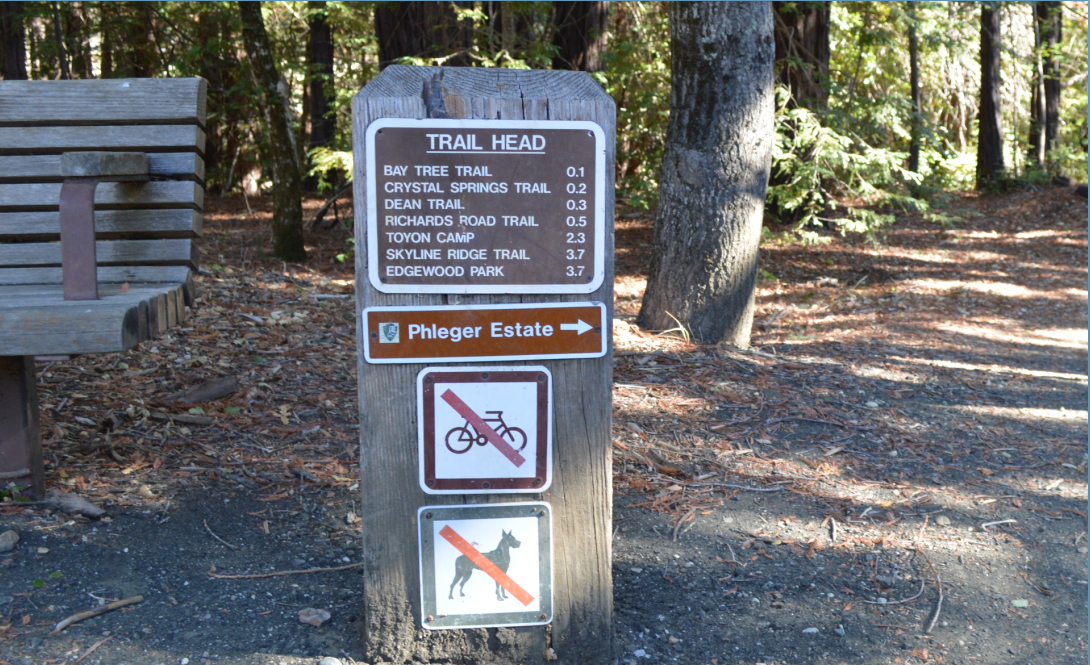 huddart county park1