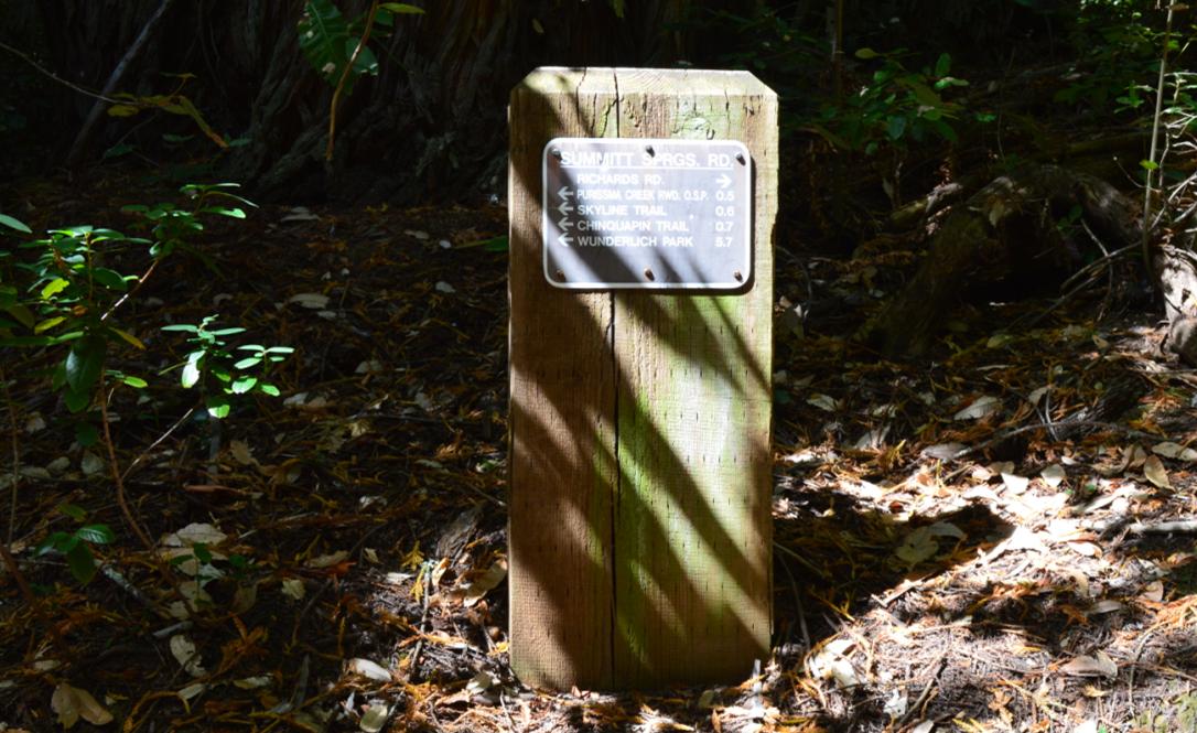 huddart county park18
