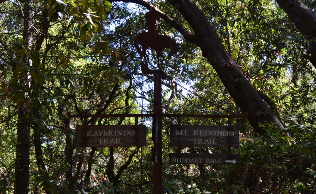 huddart county park27