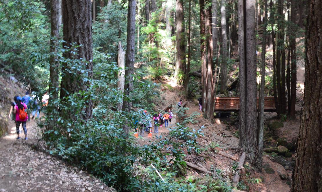 El Corte de Madera Creek Open Space Preserve18