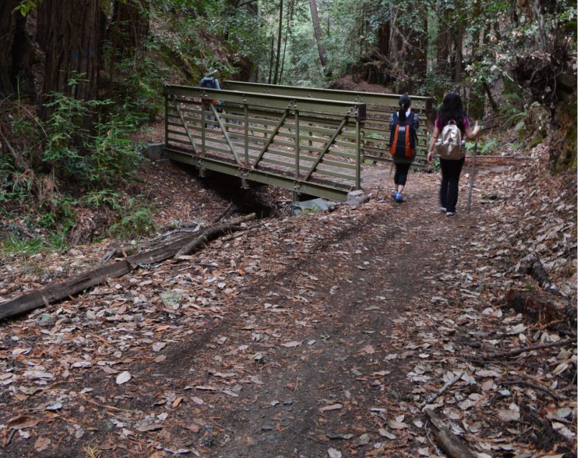 El Corte de Madera Creek Open Space Preserve2