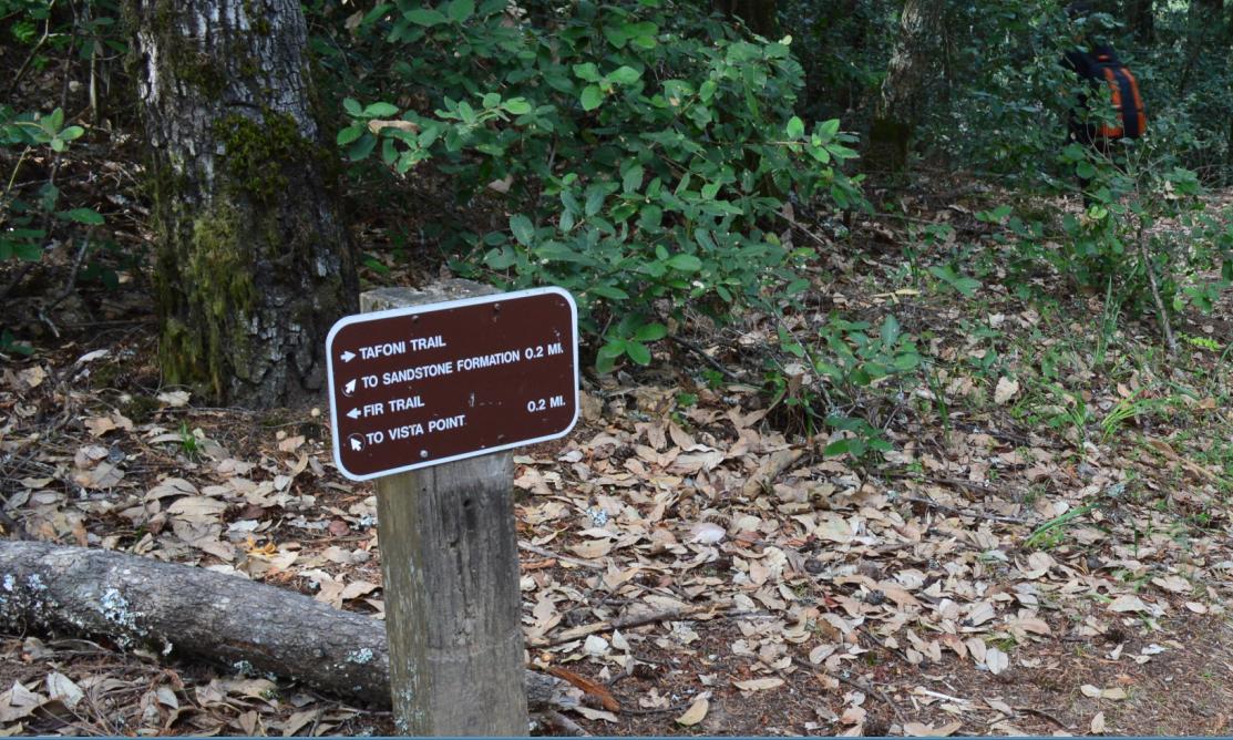 El Corte de Madera Creek Open Space Preserve33