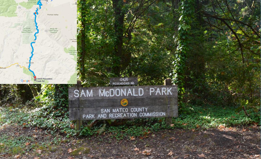 Sam McDonald Park_0