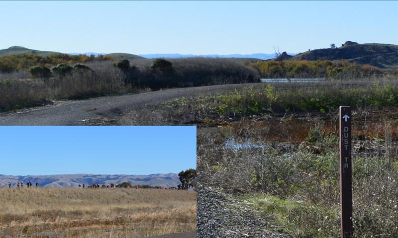 coyote hills regional park11