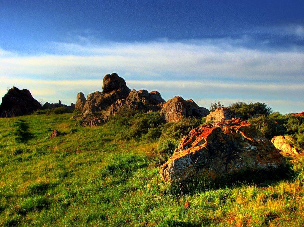 coyote hills1