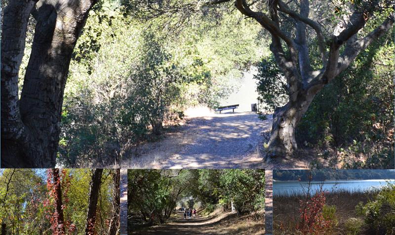 lake chabot regional park14_0