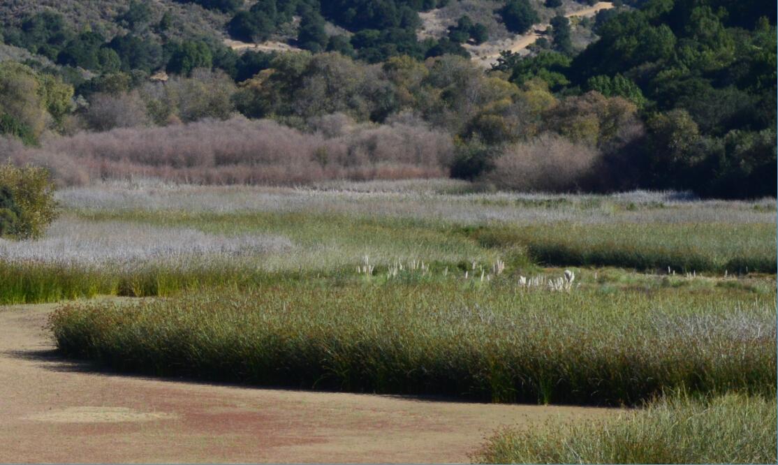 lake chabot regional park17