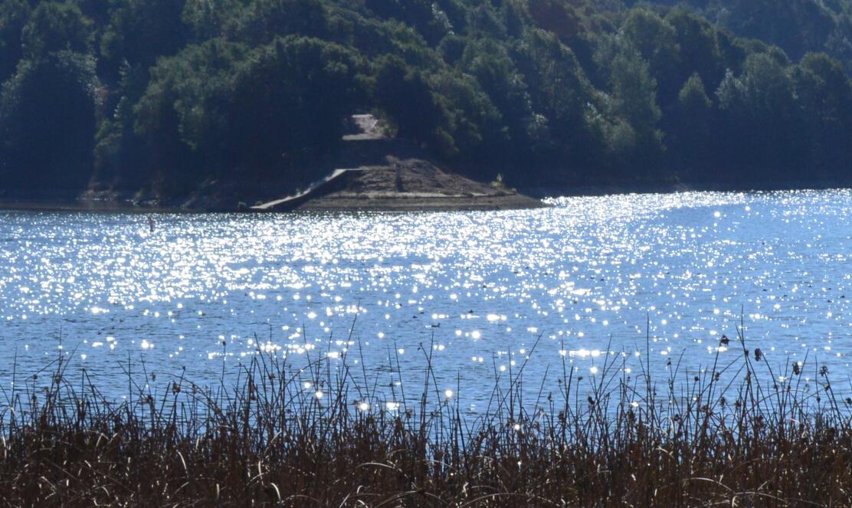 lake chabot regional park25