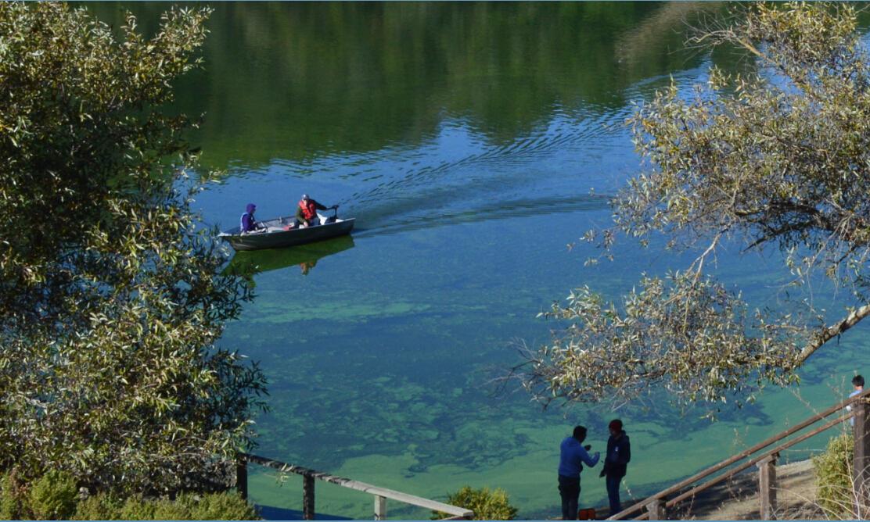 lake chabot regional park3