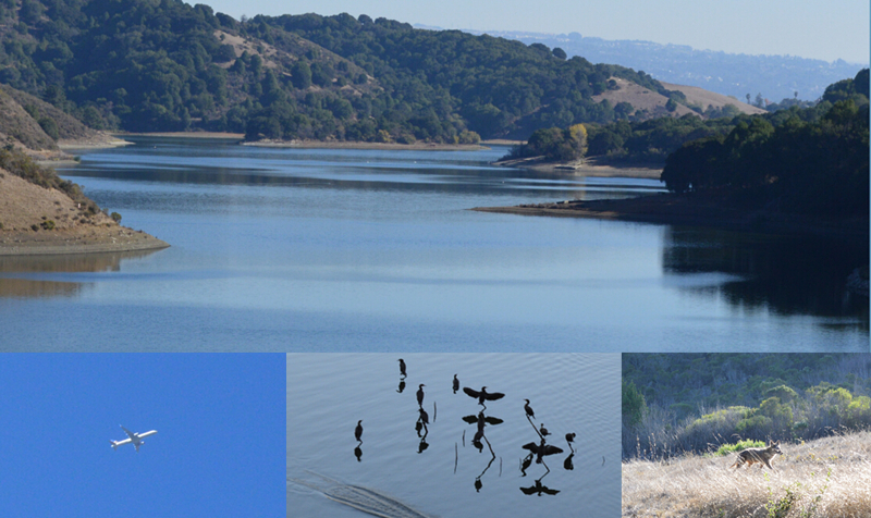 lake chabot regional park51_0