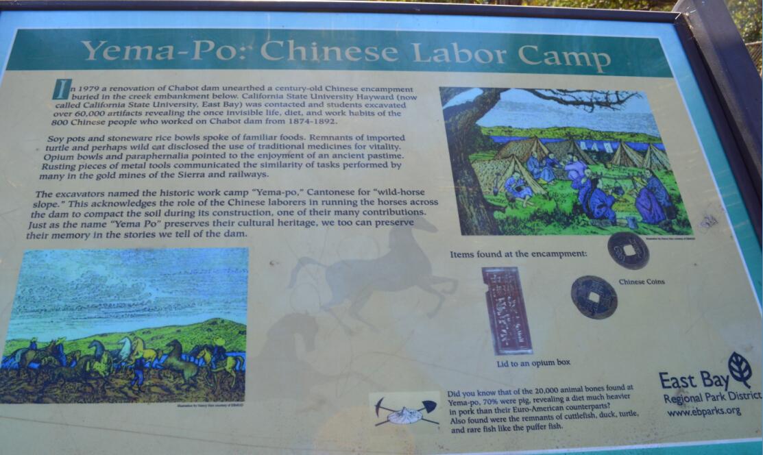 lake chabot regional park_yema po
