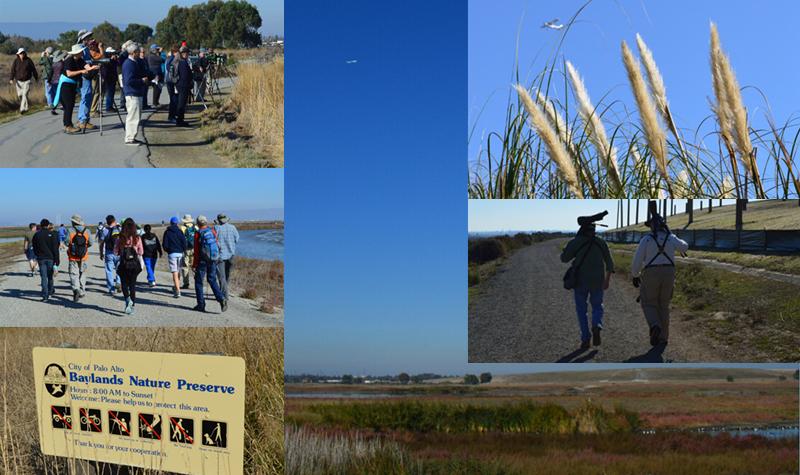 shoreline park_bayland nature preserve
