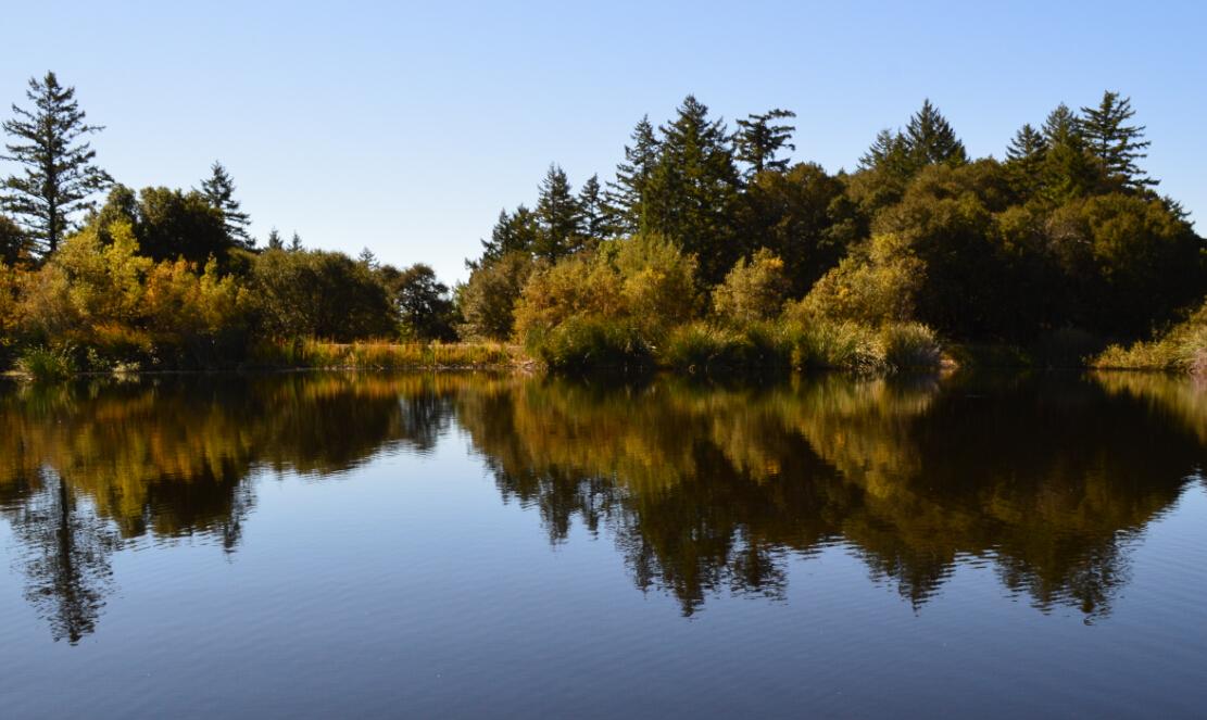 skyline ridge open space preserve9_alpine pond5