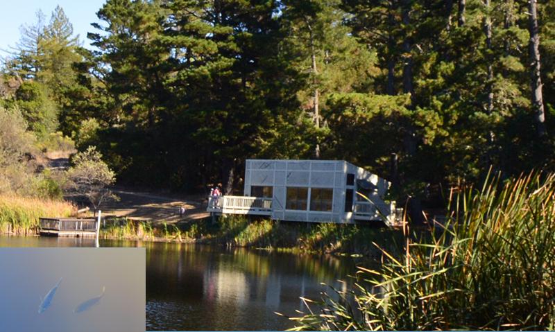 skyline ridge open space preserve_alpine pond2