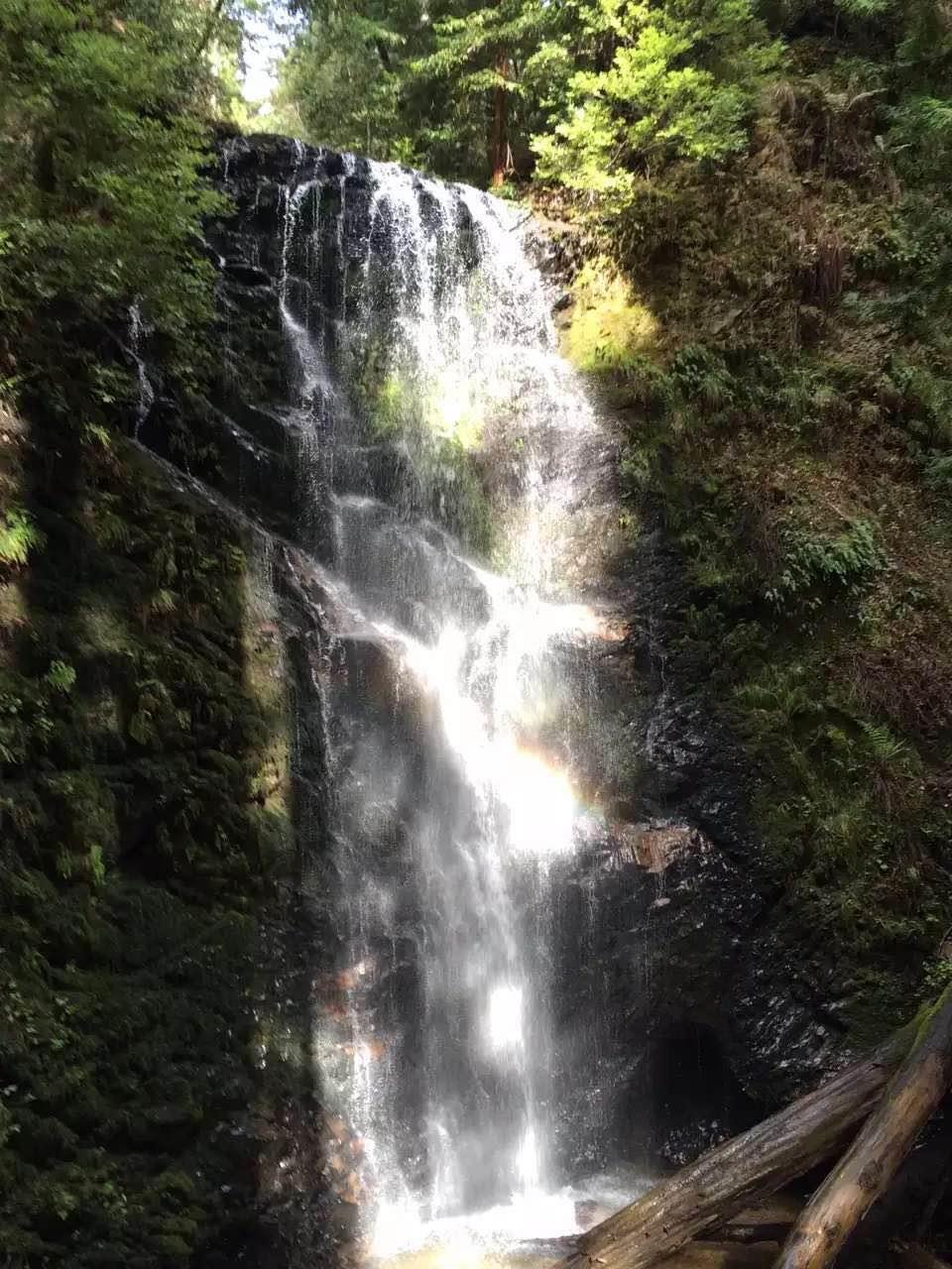 big basin berry creek falls in spring