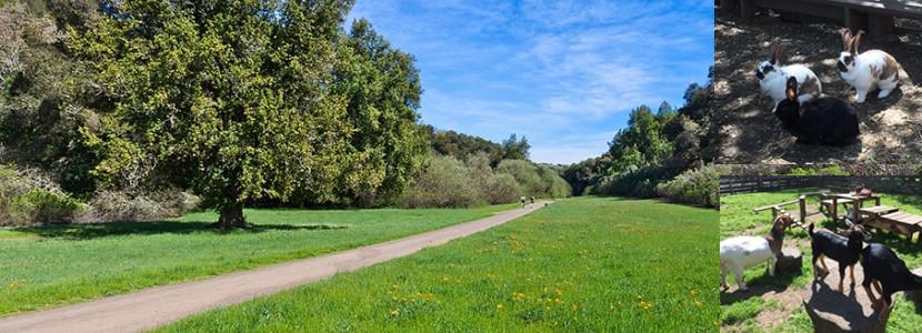 Rancho San Antonio County Park_