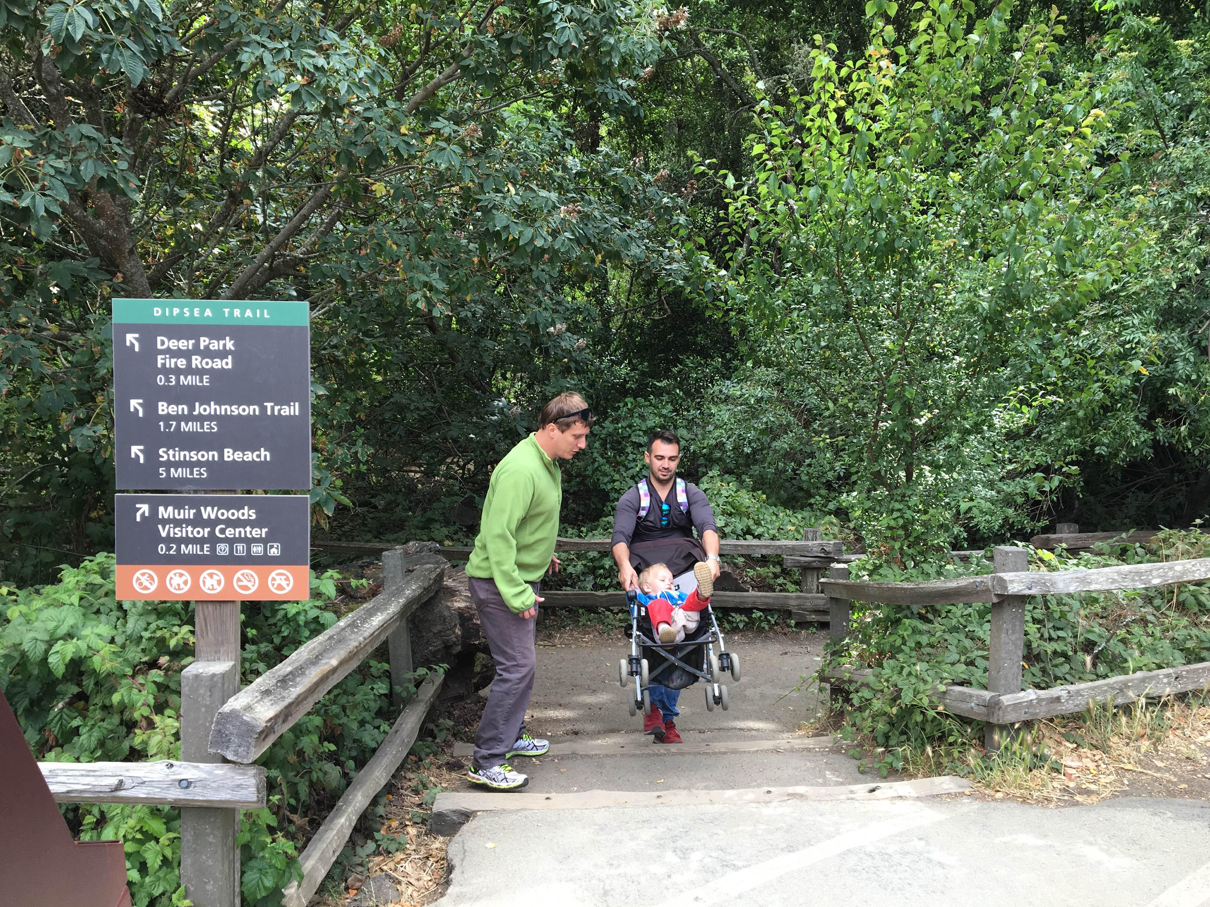 muir woods_entrance free