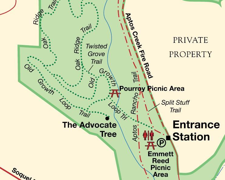 forest-nisene-marks_entrance