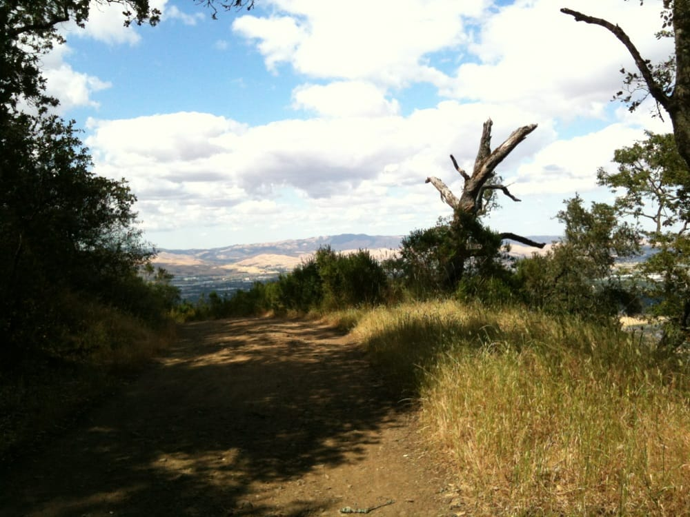 pleasanton-ridge-regional-park-view